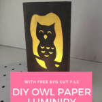 Owl Luminary Tutorial + FREE SVG
